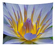 Water Lily 18 Tapestry