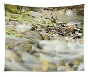Water Over The Dike Tapestry