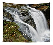 Water Rushes Forth Tapestry