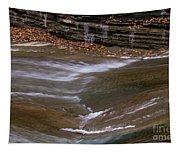 Water Slide Tapestry