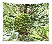 Watercolor Of Ripening Pine Cone Tapestry