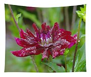 Waterdrops On Petals  Tapestry