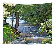 Waterfall And Hammock In Summer Tapestry
