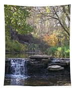Waterfall Autumn Tapestry