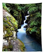 Waterfall, Glacier National Park Tapestry