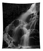 Waterfall In Black And White Tapestry
