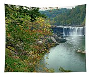 Waterfall In Forest, Cumberland Falls Tapestry