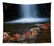 Waterfall And Leaves In Autumn Tapestry