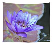 Waterlily And Bee Tapestry