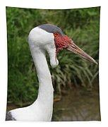 Wattled Crane Tapestry