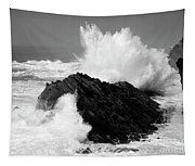 Wave At Shore Acres Bw Tapestry