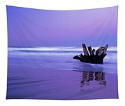 Waves Break On The Beach At Dawn Tapestry