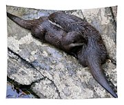 We Otter Snuggle Up Tapestry
