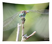 Welcome To My World Dragonfly Tapestry