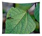 Well Dressed Hymenopteran Tapestry