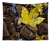 Wet Autumn Leaf On Stones Tapestry