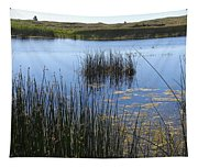 Wetland Pond In Summer  Tapestry