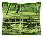 Wetland Reflection Tapestry