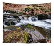 Where The River Flows Tapestry