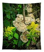 Whirled Turkey Fungus Tapestry