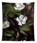White Anemone Flowers Tapestry