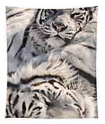 White Bengal Tigers, Forestry Farm Tapestry