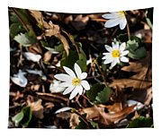 White Bloodroot Tapestry