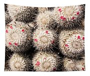 White Cactus Pink Flowers No1 Tapestry