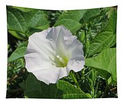 White Candour Tapestry