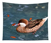 White-cheeked Pintail Tapestry
