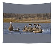 White-cheeked Pintails Tapestry