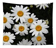 White Daisy's On The Rim Tapestry