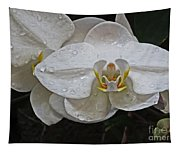 White Dream Orchid Tapestry