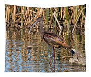 White-faced Ibis In The Wetlands Tapestry
