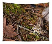 White-lined Sphinx Moth Tapestry