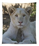 White Lion Cub  Tapestry