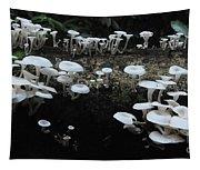 White Mushrooms Amazon Jungle Brazil 1 Tapestry