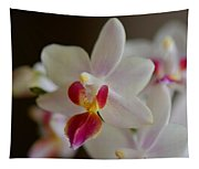 White Orchid Close Tapestry