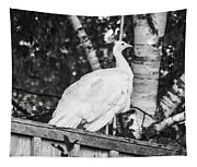 White Peacock Tapestry
