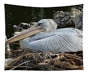 White Pelican 1 Tapestry