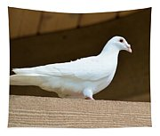 White Pigeon Tapestry