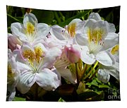 White Rhododendron In Sunlight Tapestry