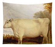 White Short-horned Cow In A Landscape Tapestry