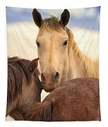 White Stallion Wild Horses On Navajo Indian Reservation  Tapestry