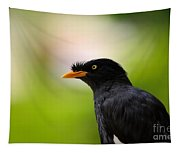 White Vented Myna Bird With Feathers Standing Above Beak Tapestry
