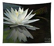 White Water Lily Reflections Tapestry