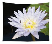 White Waterlily With Fly...   # Tapestry