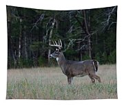 Whitetail Buck 1 Tapestry