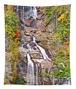 Whitewater Falls Vertical Tapestry