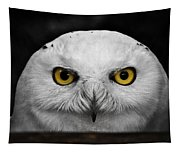 Whoooo's There?  Tapestry